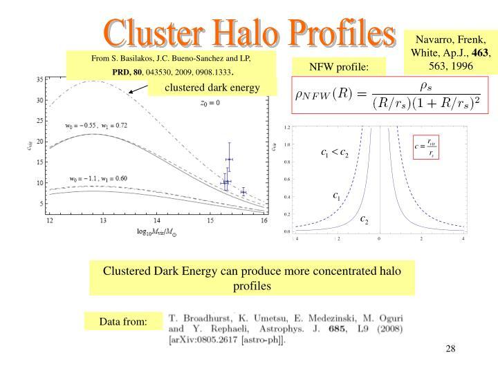 Cluster Halo Profiles