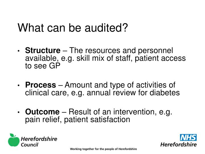 What can be audited?