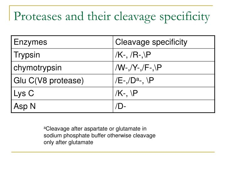 Proteases and their cleavage specificity