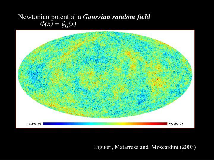 Newtonian potential a