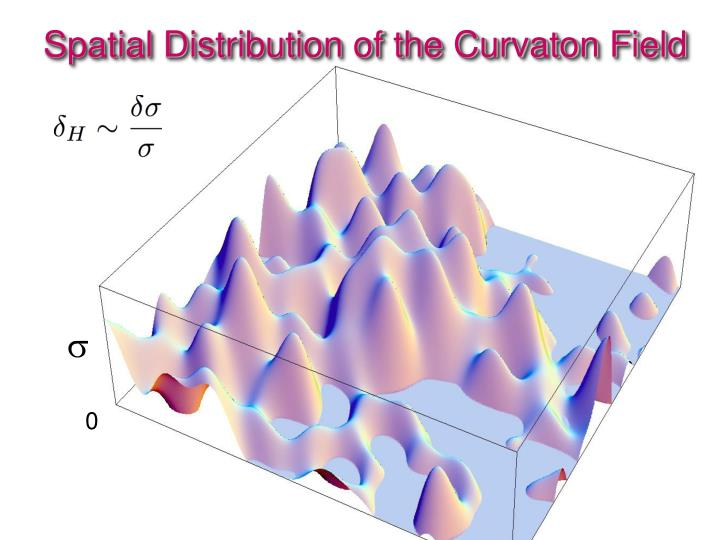 Spatial Distribution of the Curvaton Field