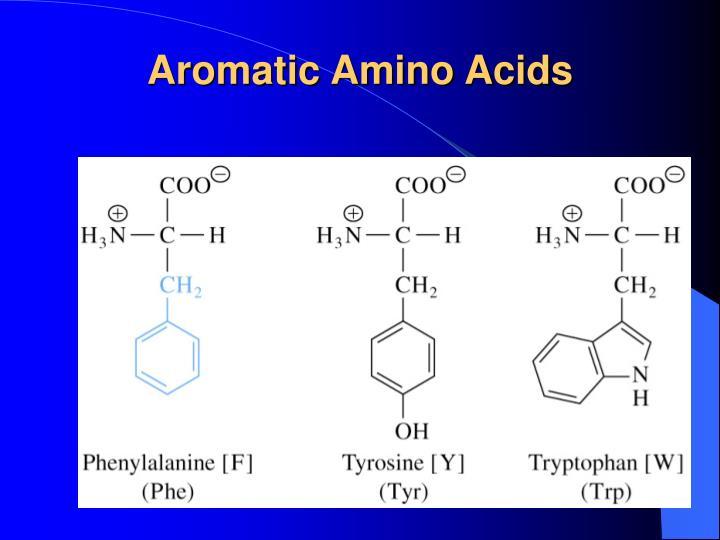 Aromatic Amino Acids