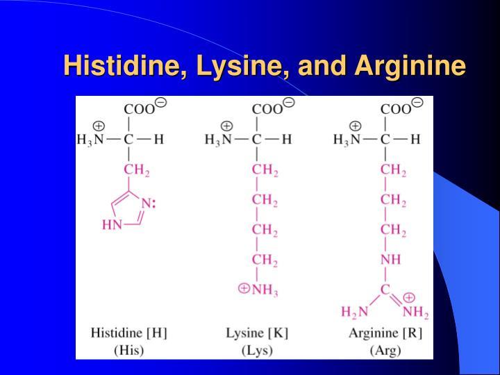 Histidine, Lysine, and Arginine