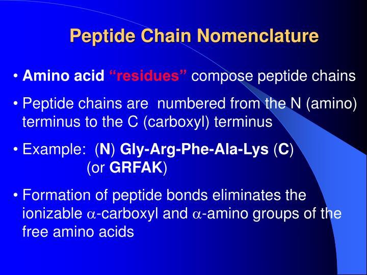 Peptide Chain Nomenclature