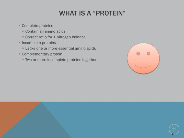 "What is a ""Protein"""