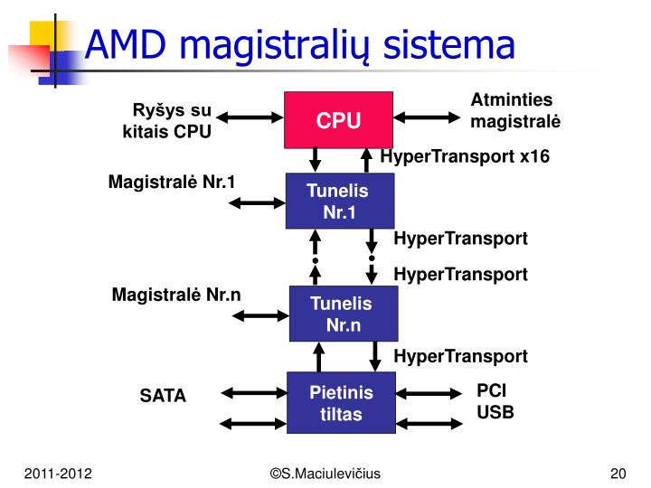 AMD magistralių sistema