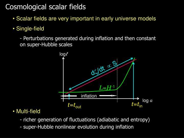 Cosmological scalar fields