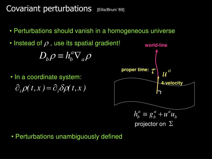 Covariant perturbations