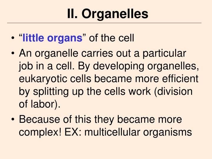 II. Organelles