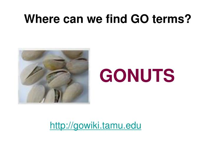 Where can we find GO terms?