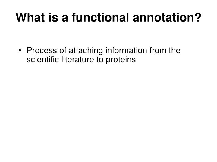 What is a functional annotation?