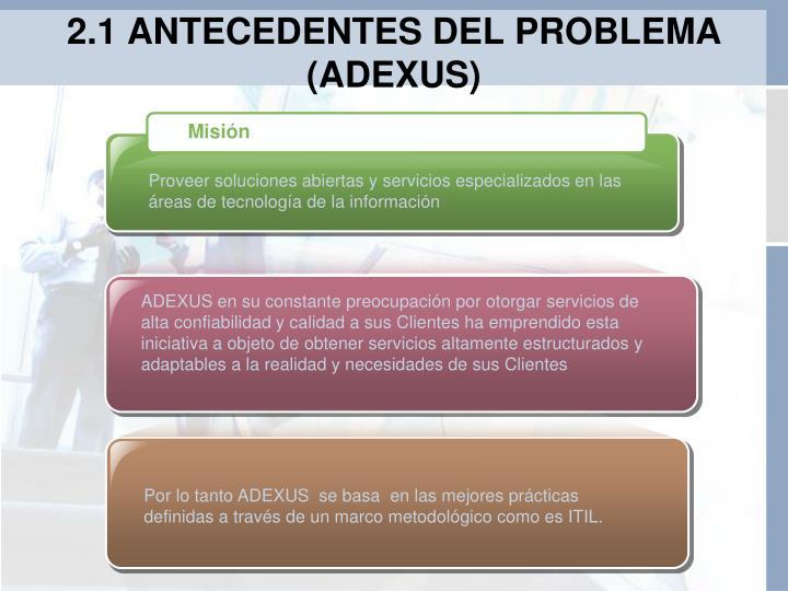 2.1 ANTECEDENTES DEL PROBLEMA (ADEXUS)