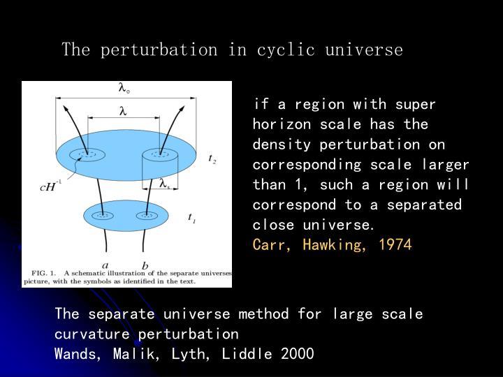 The perturbation in cyclic universe