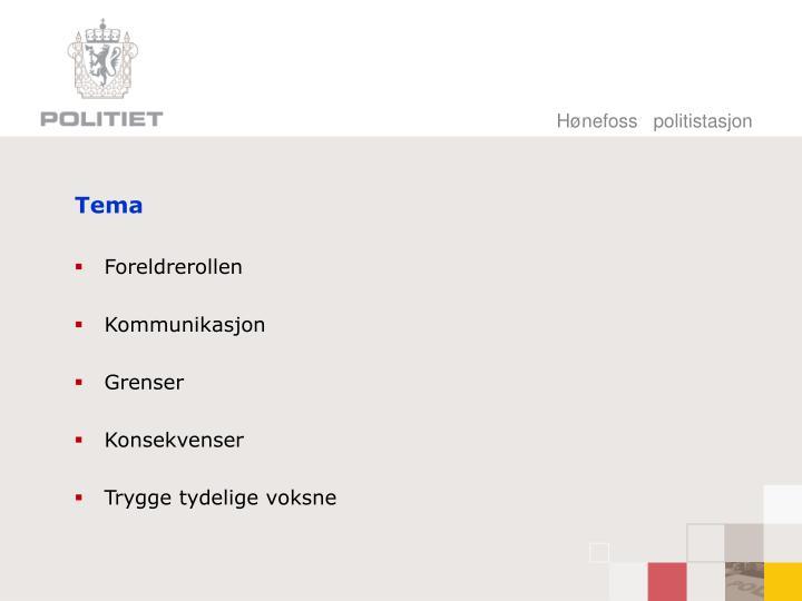 Hønefoss   politistasjon