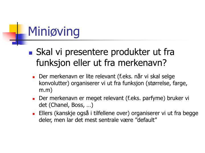 Miniøving