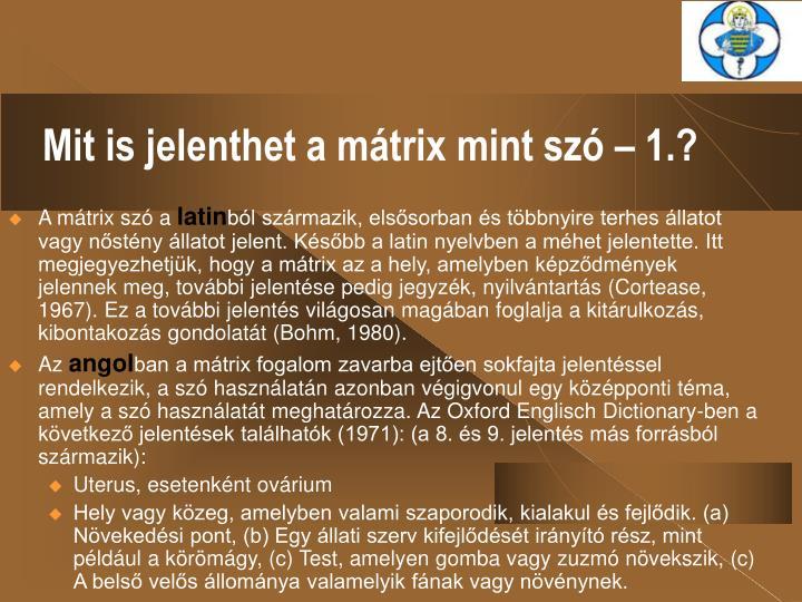 Mit is jelenthet a mátrix mint szó – 1.?