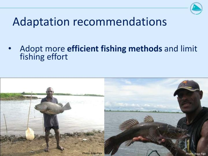 Adaptation recommendations