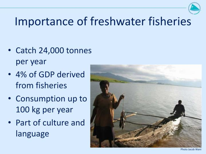 Importance of freshwater fisheries