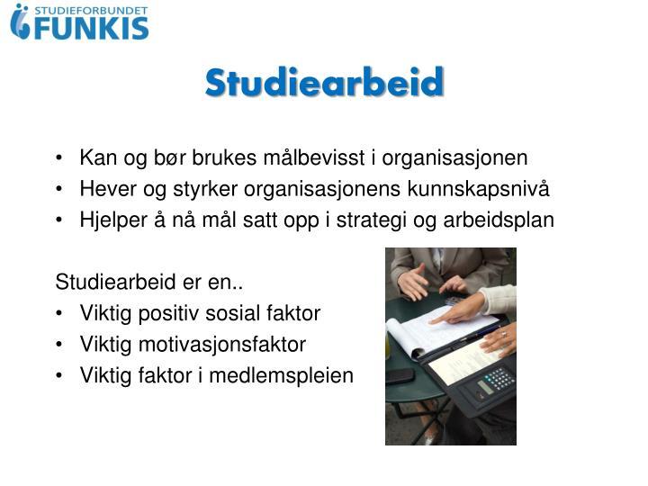 Studiearbeid