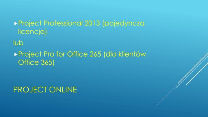 Project Professional 2013 (pojedyncza licencja)