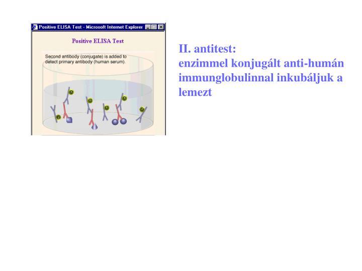 II. antitest:                                 enzimmel konjugált anti-humán immunglobulinnal inkubáljuk a lemezt