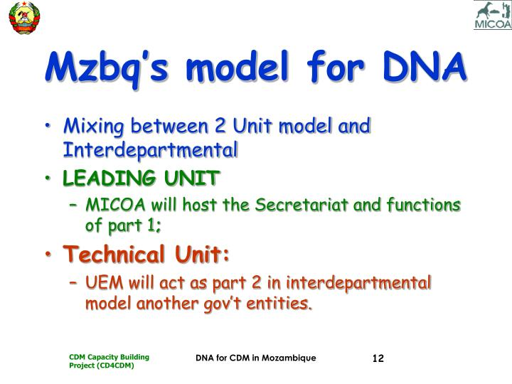 Mzbq's model for DNA