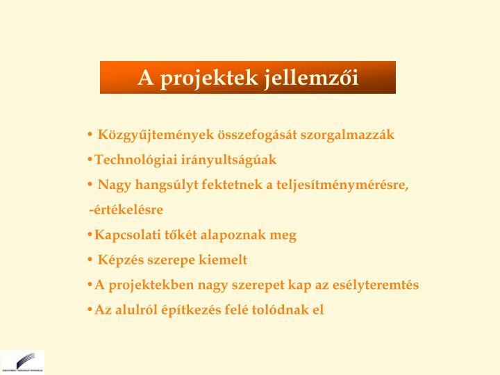 A projektek jellemzői
