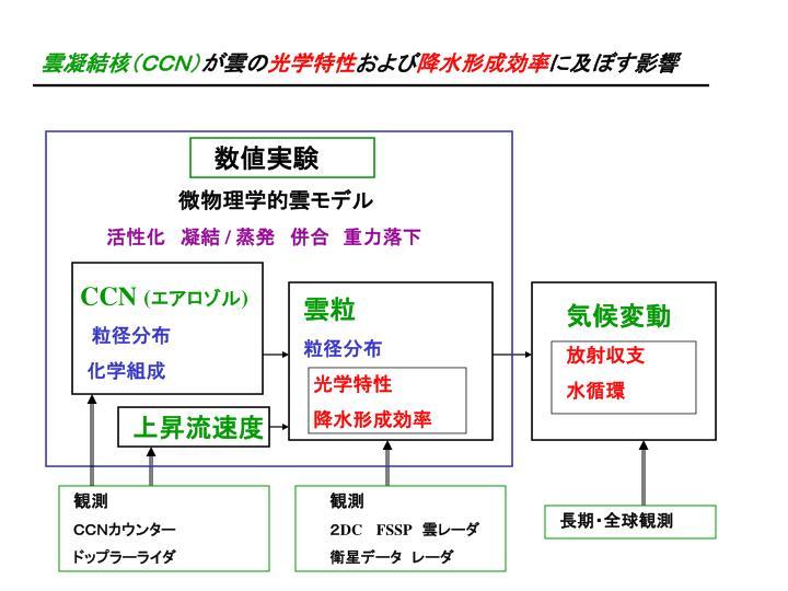 雲凝結核(CCN)