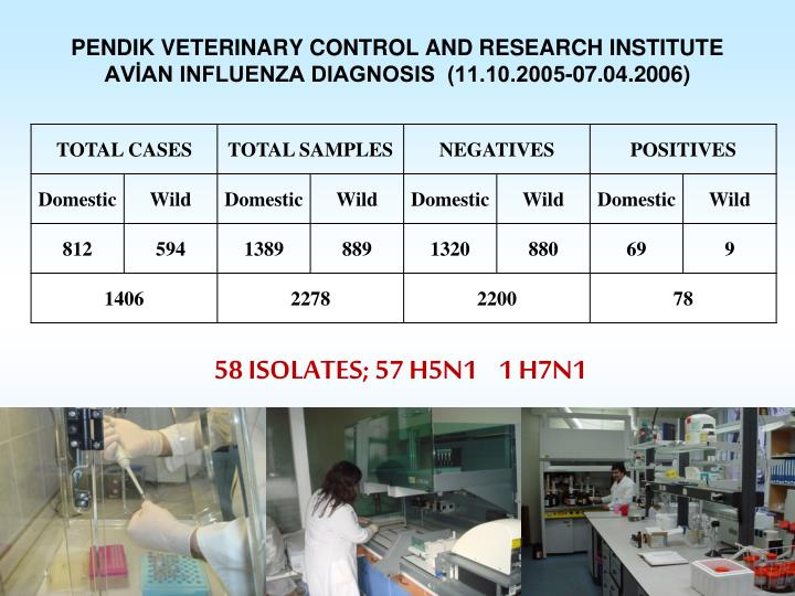 PENDIK VETERINARY CONTROL AND RESEARCH INSTITUTE
