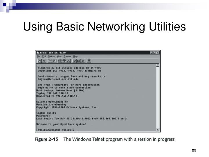 Using Basic Networking Utilities