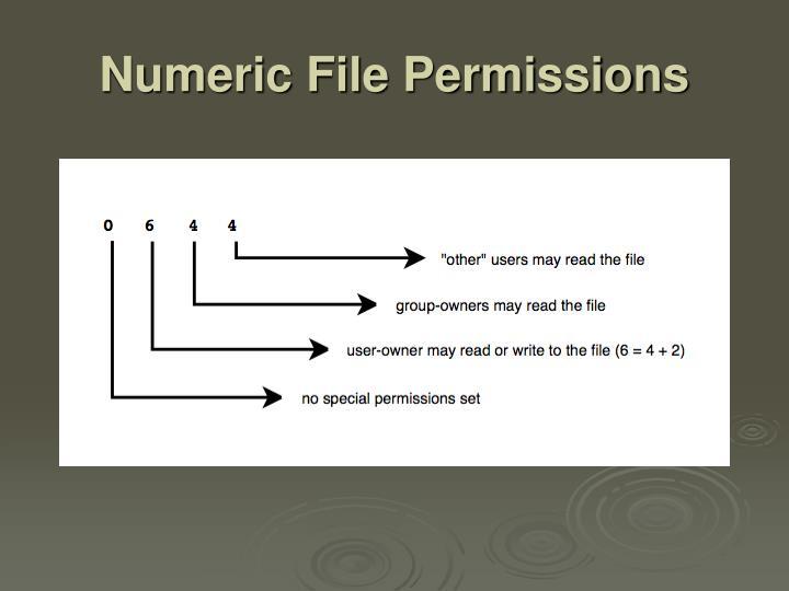 Numeric File Permissions