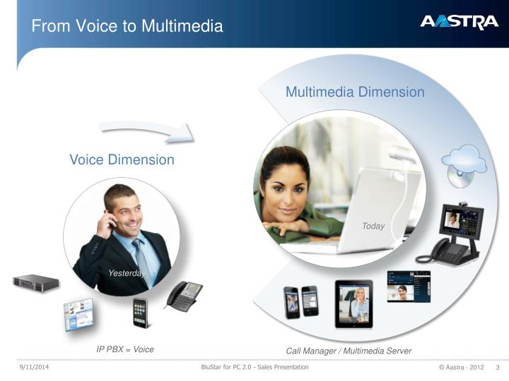 From Voice to Multimedia