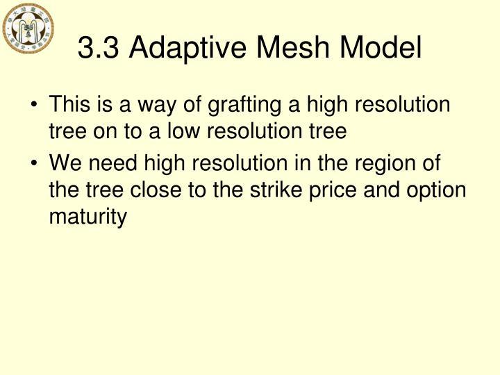 3.3 Adaptive Mesh Model