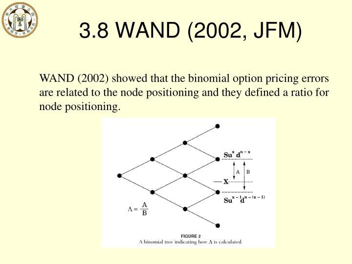 3.8 WAND (2002, JFM)