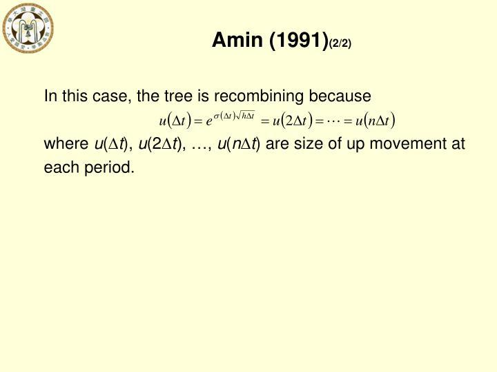 Amin (1991)