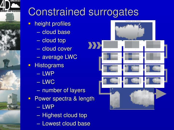Constrained surrogates