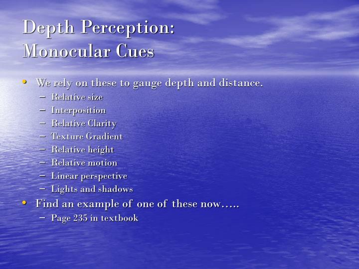Depth Perception: