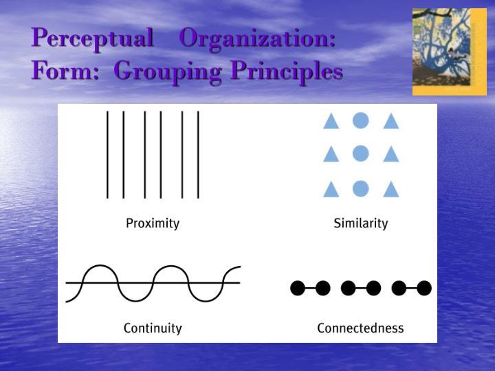 PerceptualOrganization: