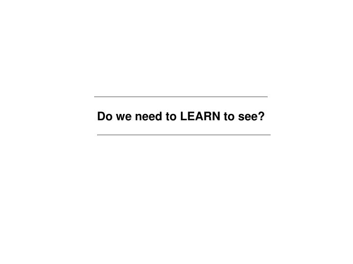 Do we need to LEARN to see?