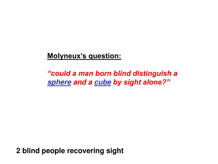 Molyneux's question: