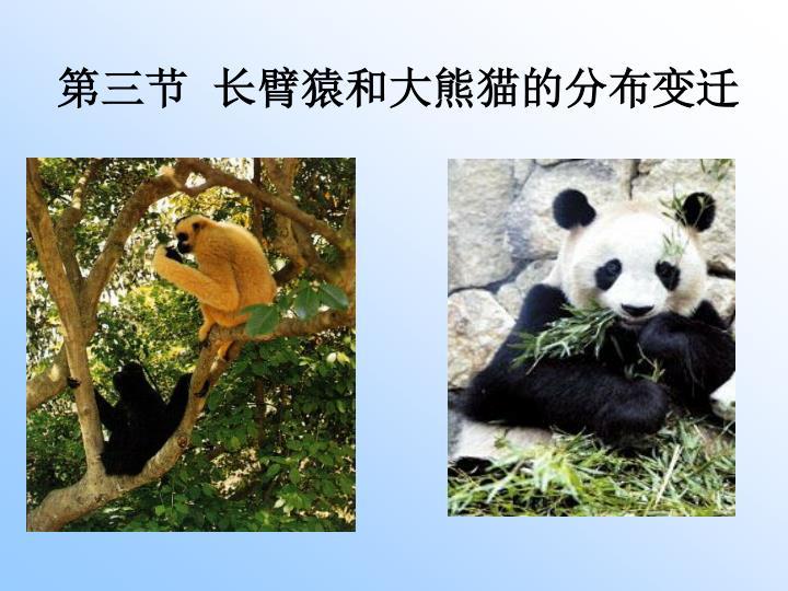 第三节  长臂猿和大熊猫的分布变迁
