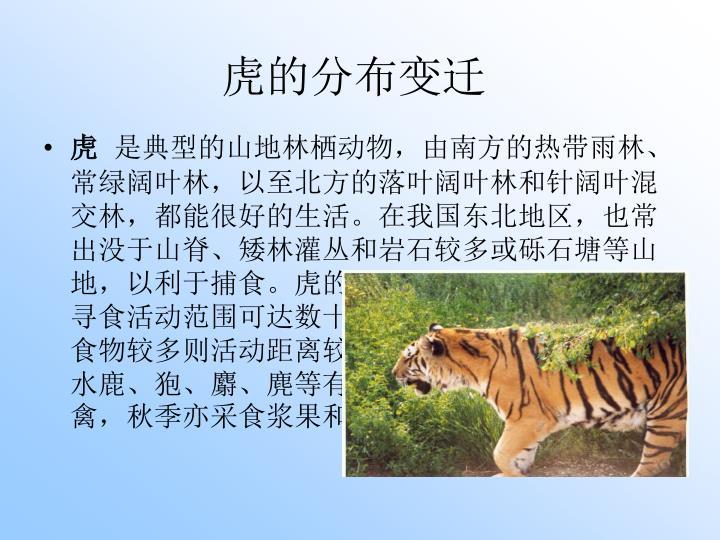 虎的分布变迁