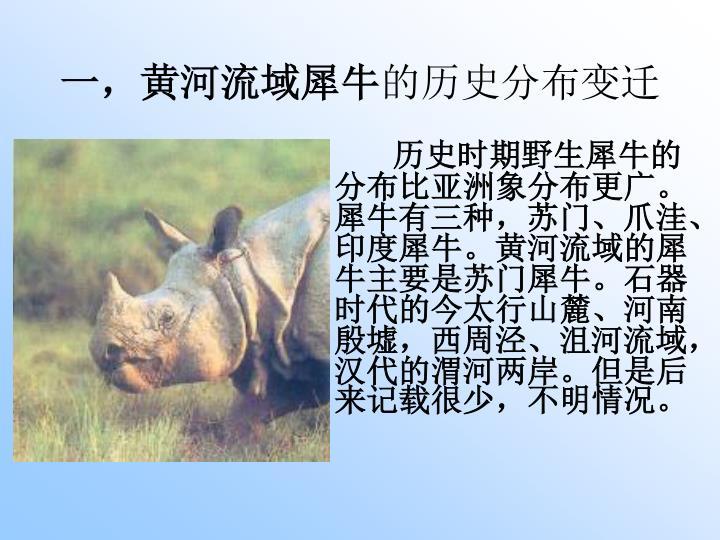 一,黄河流域犀牛