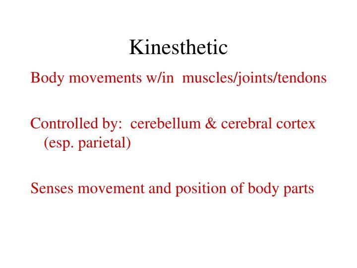 Kinesthetic