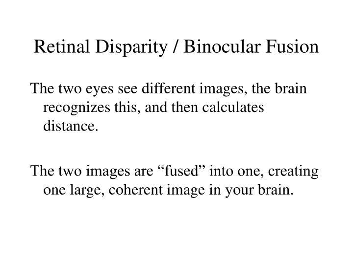 Retinal Disparity / Binocular Fusion