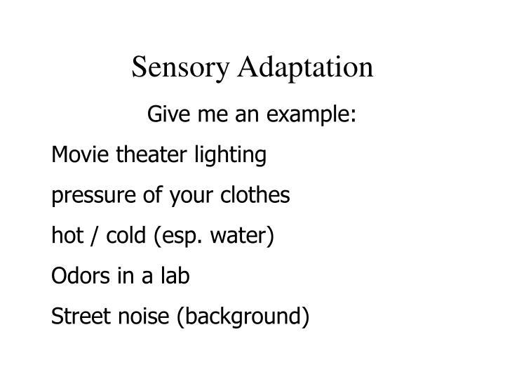 Sensory Adaptation