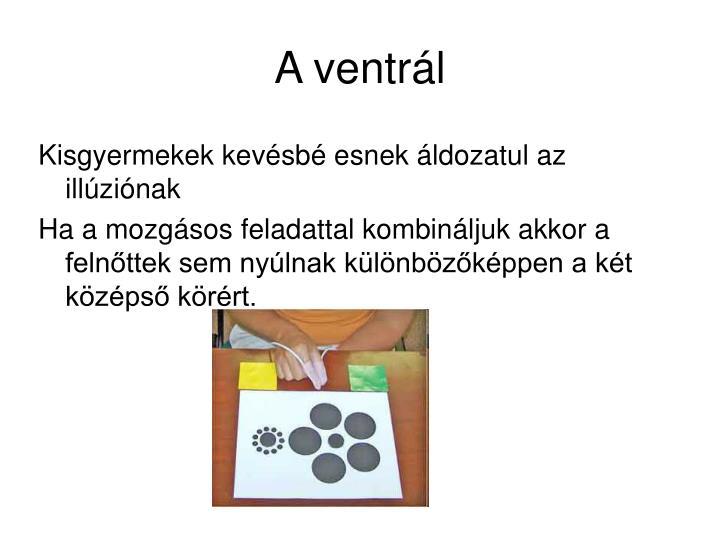 A ventrál