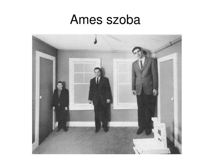 Ames szoba