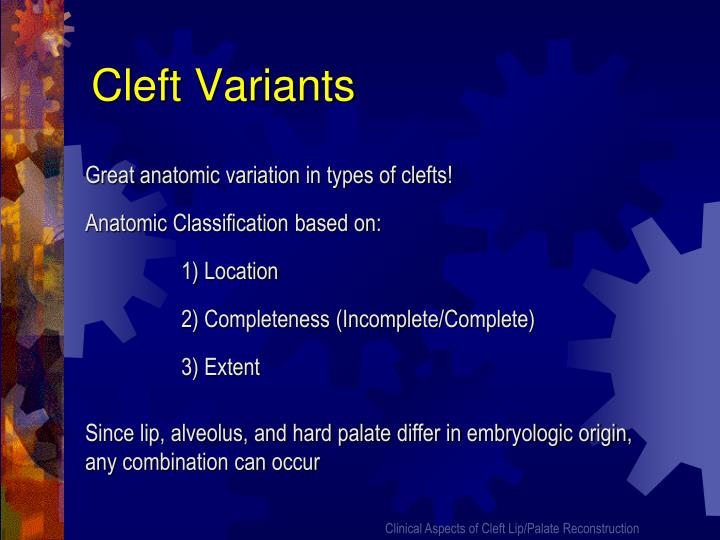 Cleft Variants