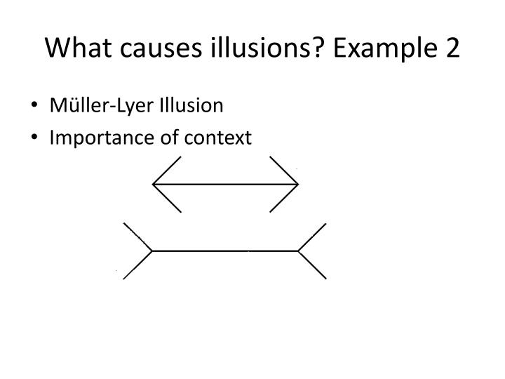 What causes illusions? Example 2